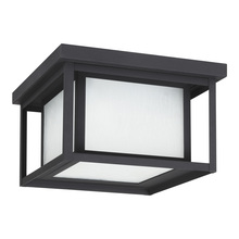 Sea Gull Canada 79039-12 - Two Light Outdoor Ceiling Flush Mount
